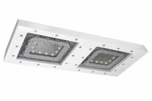 Low Profile Explosion Proof LED Light - 2x4 Lay-In Mount - Class 1 Div 2 - Paint Spray Booth Rated