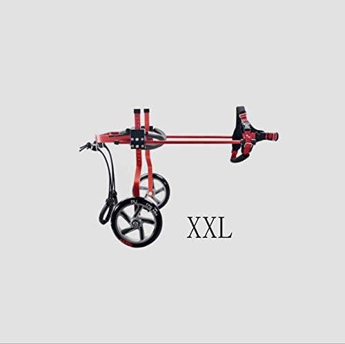 GWM Bicicleta de 2 Ruedas para Mascotas, Silla de Ruedas Ajustable ...