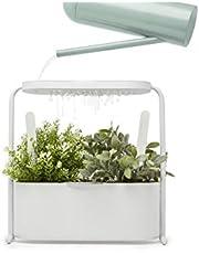 Umbra Giardino Planter, White