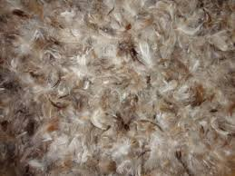 Goose Down Feather Stuffing & Fill - Bulk 10lb Bag - 10/90 Natural Grey Down Mix Real Feather Mix for Filling, Repair, Restuffing Fluff to Couch Cushions, Pillows, Jackets, Bedding Products