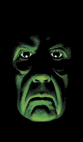 WOWindow Posters Green Faced Demon Halloween Window Decoration 34.5