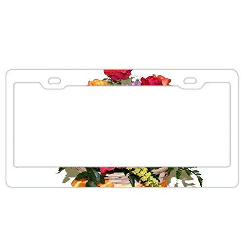 GGRGVR Roses Basket Fern Bow-Knot Aluminium Metal License Plate Frame 6