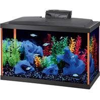 DPD AQUEON NEOGLOW AQUARIUM KIT RECTANGLE - Size: 10 GALLON - Color ORANGE by DPD