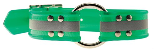 Collar Reflective Sunglo (OmniPet Sunglo Reflective Ring in Center Dog Collar, Green, 1.5