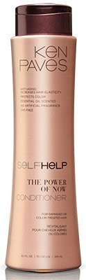Ken Paves SelfHelp? The Power of Now Conditioner by Ken Paves SelfHelp