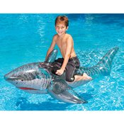 INTERNATIONAL LEISURE PRODUCTS 9045 72