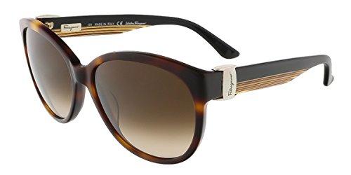 Ferragamo Sunglasses SF 651S TORTOISE 214 - Sunglass Ferragamo