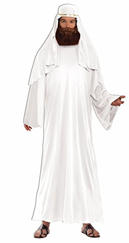 Mens Sultan Costumes (Forum Men's Value Biblical Robe, White, Standard)