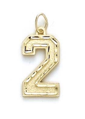Sport Grand format 14 Carats Pendentif JewelryWeb numéro 2