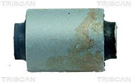 Brazo oscilante Triscan 8500 10822 Suspensi/ón