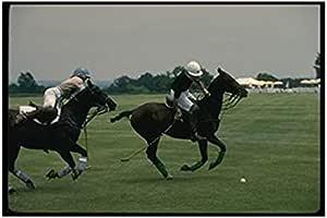 Photo Block Horse Landscape Tableau 45cmx 30cm - 2724819883859