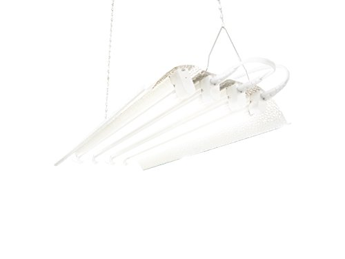 T5 HO Indoor Grow Light - 2 FT 4 Lamps - DL824J Fluorescent Hydroponic Fixture Bloom Veg Daisy Chain with Bulbs, Low Profile -Only 2 Inch height