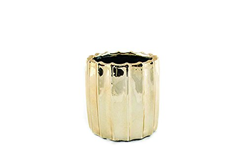 Thompson Ferrier Ribbed Metallic Fennel & Fig Candle (Gold)