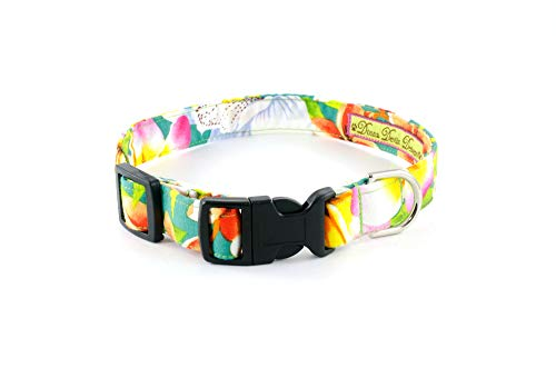 Donna Devlin Designs- Tropical Punch 2.0 Collar Every Day is a Day at The Beach When Wearing Our Fun Loving Tropical Punch Collar. (Small (10-15