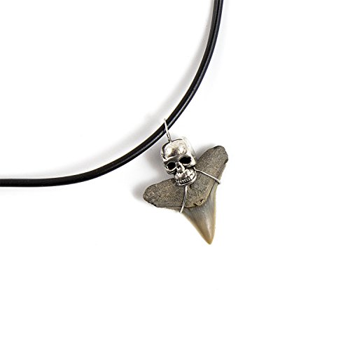 Beverly Oaks Mako Shark Tooth Necklace - Shark Teeth Accessories For Archeology (Collector Megalodon Shark Tooth)