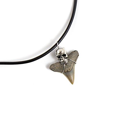 Teeth Prehistoric Shark (Beverly Oaks Mako Shark Tooth Necklace - Shark Teeth Accessories For Archeology Lovers)