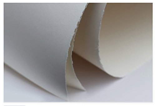 Arnhem 1618 Standard White Printmaking Paper, 22 X 30 inches, 245GSM, 25 Sheets Per Package (007000) by Speedball
