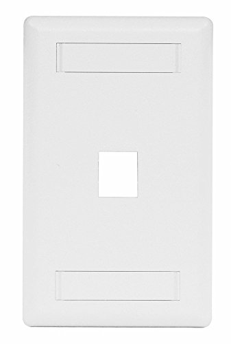 (Hubbell IFP11W 1-Port Rear-Loading Single-Gang Faceplate, 1 Gang, White)