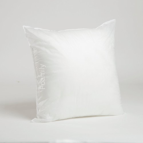 Throw Pillow Inserts 20 X 20 : Top 5 Best throw pillow insert 20x20 down for sale 2017 : Product : BOOMSbeat