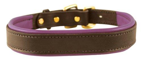 Perri's Padded Leather Dog Collar, Havana/Purple, Large1.25
