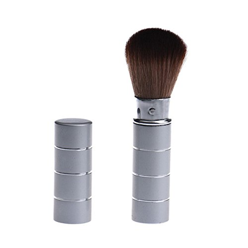 Retractable Makeup Brush - Retracting Makeup Brush - 1PC Pro Retractable Dome Blush Brush Aluminum Eyeshadow Foundation Facial Brushes - Retractable Blush Makeup ()
