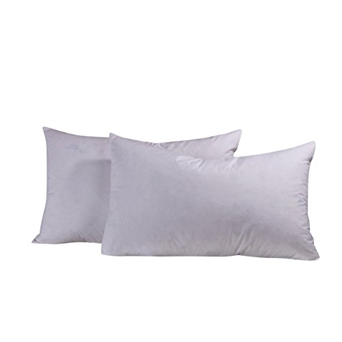 [Unite Down A Pair OF White Pillows Insert Filling With Goose Feather Down, 100% Organic Cotton 233TC, White, 20x26inch] (Goose Down Feather Pillow Insert)