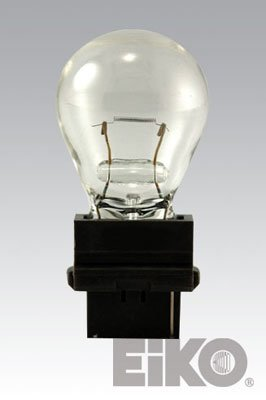 Landscape Light Bulb 3156