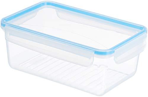 AmazonBasics Set of 2 Clip Boxes - 2X 2,0 l