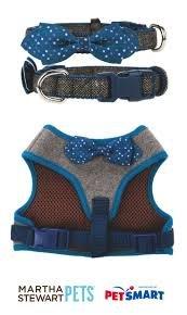 Martha Stewart PetsBlue Tweed With Bow Dot Adjustable Collar~Xs~