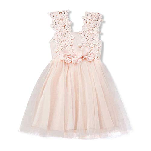 SOVIKER Baby Girls Princess Flower Dress Sleeveless Lace Tutu Gown Bridesmaid Party Wedding Birthday Dress-a168-Pink-120]()