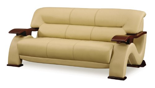 (Global Furniture Parker Collection Leather Matching Sofa, Cappuccino)