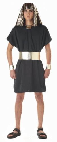 California Costumes Men's Pharaoh Costume, Black, (Small Mens Halloween Costumes)
