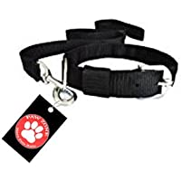 Pawzone Black Leash with Collar Set for Dogs -Small