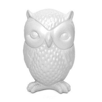 Kikkerland Owl Coin Bank (Set Coin Owl)