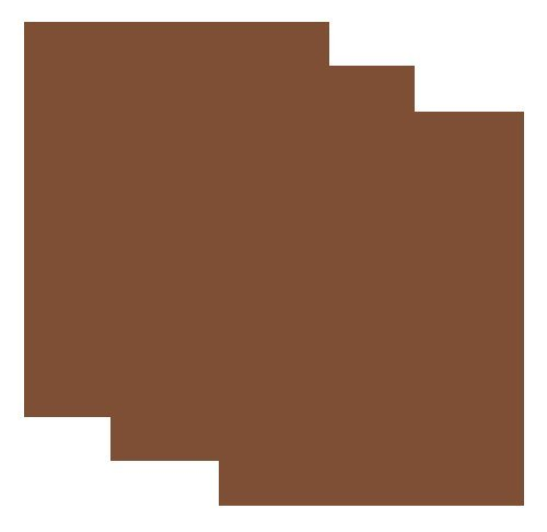 SISER EasyWeed Heat Transfer Vinyl HTV for T-Shirts 12 x 15 Inches 3 Precut Sheets (Brown)