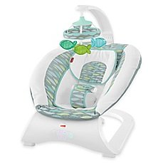 Soothing River Deluxe Bouncer