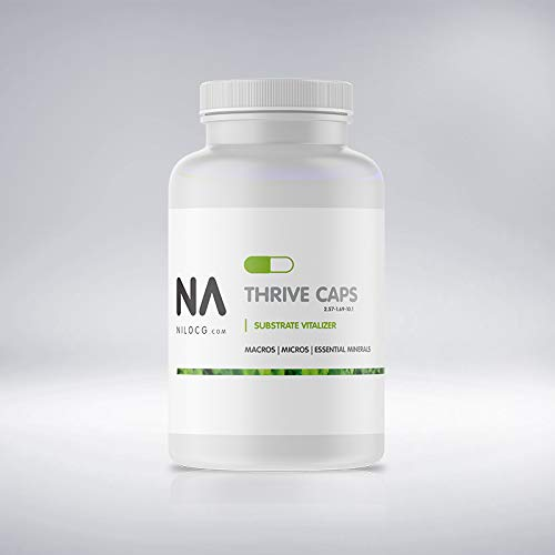 ThriveCaps | Aquarium Root Tab/Caps | NA Premium Root Caps 60 Count(1 Gram Each) (60 ct)