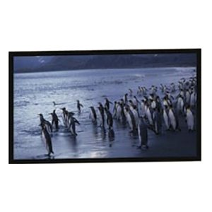(New - AccuScreens Fixed Frame Projection Screen - N09254)