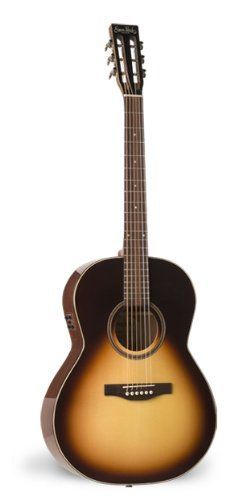 S&P Woodland Pro Folk Sunburst HG