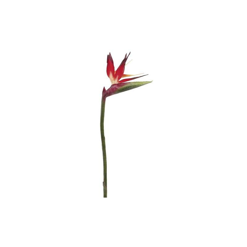 "silk flower arrangements 31"" large bird of paradise spray red orange (pack of 6)"