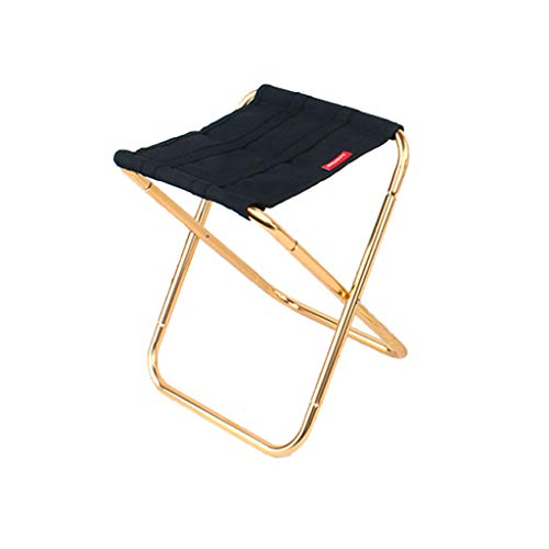 Tpingfe Portable Folding Chair Outdoor Camping Fishing Picnic Beach BBQ Stools Mini Seat (M)