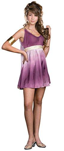Girls Gorgeous Grecian Goddess Purple Ombre Costume Dress Teen L 11-13