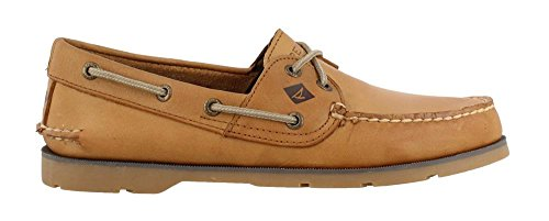 sts13646 sts13646 Sahara SP Sperry Sperry Sahara Herren SP Herren SP Sperry sts13646 A675q5