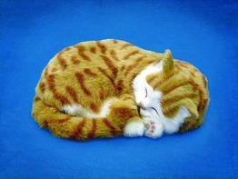 Orange Tabby Animated Pet by Perfect Petzzz