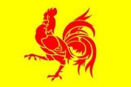 Belgium Wallonia - Coq Hardi - Bold Rooster Flag 150cm x 90cm