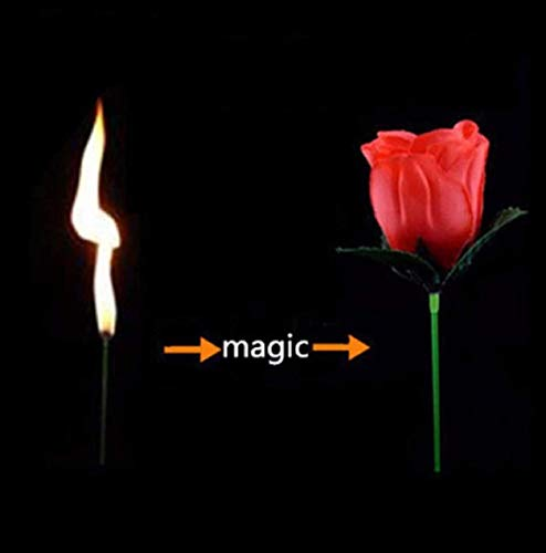 Hot Torch to Flower - Torch to Rose - Fire Magic Trick Flame Appearing Flower Professional Magician bar Illusion - Roses Grenade