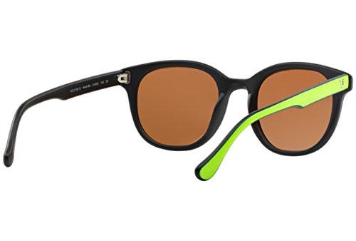 Vogue - Lunette de soleil - Femme Brown-Green