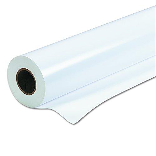 (Epson Paper, Premium Semigloss Photo Paper)