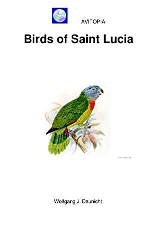 AVITOPIA - Birds of Saint Lucia