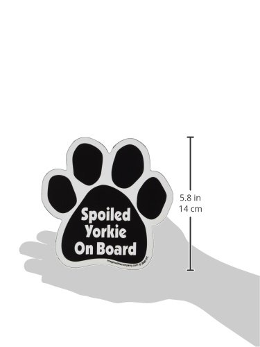Imagine-This-Paw-Car-Magnet-Spoiled-Yorkie-on-Board-5-12-Inch-by-5-12-Inch